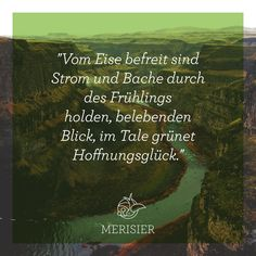 Goethe today :)