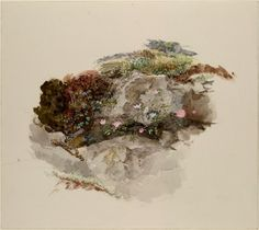 Study of foreground material. Finished sketch in water-colour, from nature. John Ruskin, probably July - August 1871