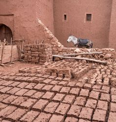 From Marrakech to Ouarzazate Atlas Mountains, Marrakech, Coast, Design, Design Comics, Seaside