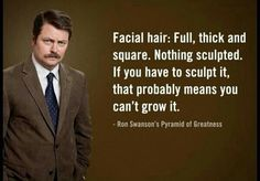 Ron Swanson facial hair