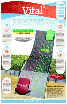 Vital5 nutrient super highway. Try it here: www.foreveraloecolorado.flp.com
