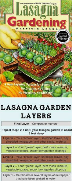 Detailed guide on how to build great raised bed gardens for vegetables and flowers! Lots of tips and ideas on best designs, compost and soil building, and best materials to build productive & beautiful DIY raised beds!