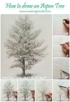 Pencil Drawing Tips Swati Singh Art Trees Drawing Tutorial, Pencil Drawing Tutorials, Watercolour Tutorials, Tree Drawings Pencil, Art Drawings, Drawing Trees, Drawing Art, Pencil Art, Blog Art