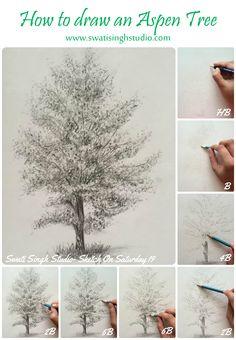 Swati Singh Art | Blog  Sketch on Saturday by Swati Singh. How to draw an aspen tree #pencil #sketch #aspen #tree #drawing #sketchonsaturday #swatisingh #stepbystep #art #tutorial http://www.swatisinghstudio.com/folio.aspx