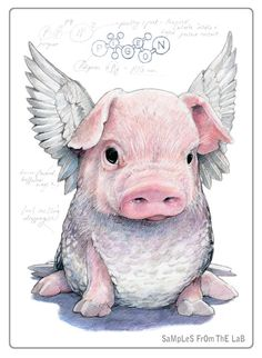 Rob Foote Art and Illustrations Illustrations, Illustration Art, Animals And Pets, Cute Animals, Pig Art, Flying Pig, Cute Pigs, Little Pigs, Fantasy Creatures