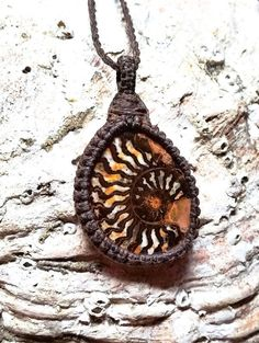 Ammonite macramé necklace! This Ammonite is very unique with such vibrant colors! A gorgeous fossil for a man or a woman!! This healing stone