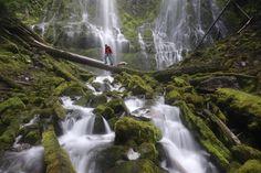 Capturing Oregon: A Trek to Proxy Falls | Travel Oregon