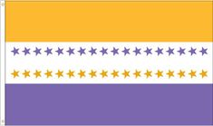The Suffragette Flag.  LOVE the colors.  LOVE and loathe that my state is the last (36th) star.