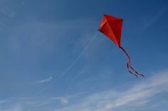 """""""Don't be afraid of opposition. Remember, a kite rises against, not with the wind."""" ~Hamilton Wright Mabie"""