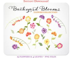 Hand Drawn Flower Clipart  Design Elements  by KellyJSorenson, $5.00