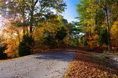 PENTAX Photo Gallery : Fall Road - by David Fletcher