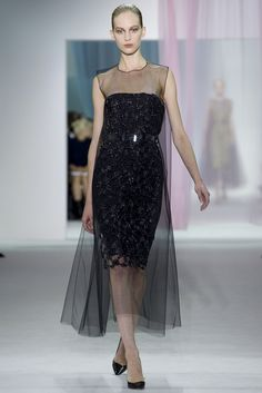 Christian Dior Spring 2013 Ready-to-Wear Fashion Show - Vanessa Axente (Viva)
