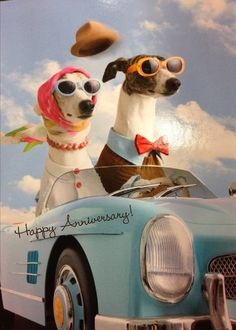 Dog Humor Couple Card:   Two dogs in a car. Fun for celebration. Customize it for any occasion.   Surprise your dad. Click on this anniversary greeting card to show them you remembered their special day.  Add your own additional images  Save time by sending this awesome Card to someone you know. #Card #Sendcere #ParentAnniversary