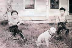 vintage photo Boys on Metal Tricycles w White Pit Bull by maclancy, $44.00