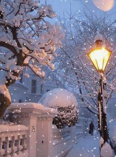 ideas for nature winter wonderland snow scenes I Love Winter, Winter Day, Winter Snow, Winter Christmas, Christmas Time, Hello Winter, London Christmas, Winter Season, Winter Scenery