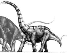 supersaurus.