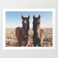 Hvis nu man skulle have noget med hest! Horse Friends Art Print by Kevin Russ - $17.00