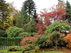 Simple Japanese Garden Design 101 Home Interior Eksterior