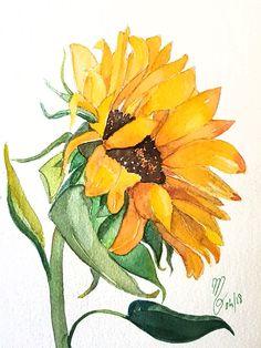 #flower #flowers #watercolour #watercolor #watercolorart #watercolorpainting #fleurs #aquarelles #aquarelle #sunflower #tournesol #mpdesormiere
