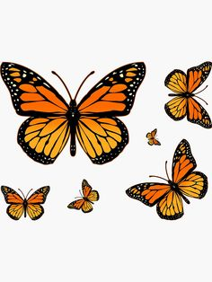butterfly quotes 'Monarch Butterfly Rapsody' Sticker by Garaga Monarch Butterfly Tattoo, Butterfly Sketch, Butterfly Design, Butterfly Template, Crown Template, Heart Template, Butterfly Tattoo Designs, Orange Butterfly, Cute Butterfly
