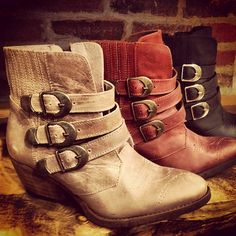 496d9d44e1e 19 Best FREEBIRD obsession!!! images in 2013 | Ankle bootie, Ankle ...