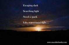 Life, a perennial fight....   Saurabh's Lounge