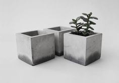 cubus concrete planter by frauklarer