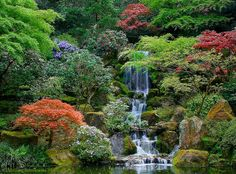Japanese Friendship Garden in Portland, Oregon.  I took this exact same photo when I was there!