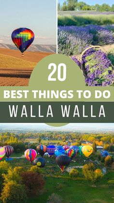 Even though Walla Walla is most notable for being Washington state's wine region, there are many more things to do in Walla Walla than just wine tasting. Yes, Walla Walla has the highest concentration of wineries in all of Washington state and people from all over the nation flock to this area for a weekend of vineyard and wine bar hopping. Usa Travel Guide, Travel Usa, Travel Guides, Family Road Trips, Road Trip Usa, Just Wine, Amazing Destinations, Travel Destinations, Evergreen State