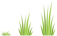 Number of blades of grass per tuft / rate of growth / size of blade