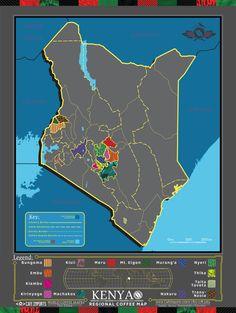 Cafe Imports   Kenya