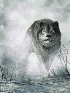 The Wolf of Winter by deskridge