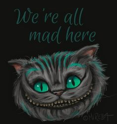 We're all mad here                                                                                                                                                      Mehr