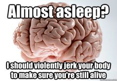 Thanks, brain.