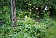 Solar cell-lamps! Lindas trädgårdsblogg