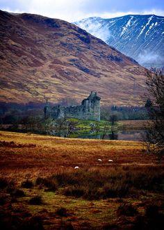 colour my world - Scotland