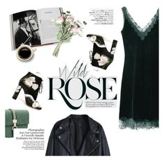 wild rose by punnky on Polyvore featuring polyvore fashion style Dolce&Gabbana Assouline Publishing Avenue clothing