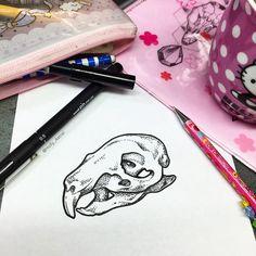 Spending Saturday in the shop sketching skulls, a guinea pig skull. Squeak squeak!  #ssssssssssss