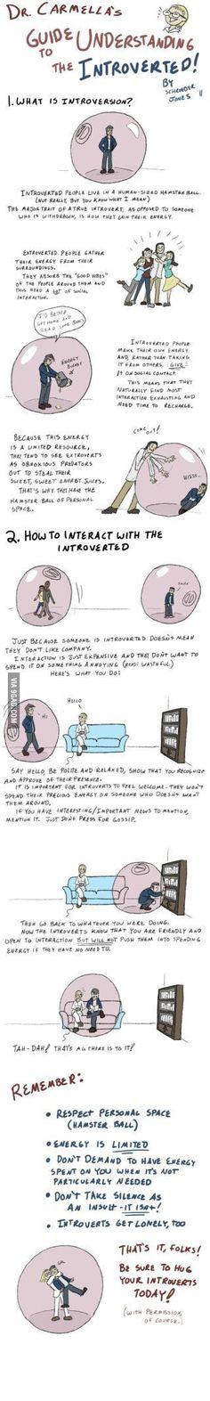Hug your introvert!