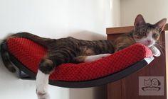 """Katze: Schlafplätze - Katze Regal """"CHILL"""" - ein Designerstück von Cosy-and-Dozy bei DaWanda"""
