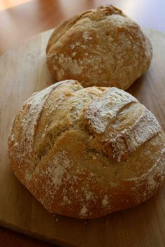 """I will be turning over a new leaf, I mean... a new loaf, this year. I bought the popular book """"Artisan Bread in Five Minutes a Day"""" by Hertzberg and Francois because I wanted to try their method in two of my pizza ovens."""