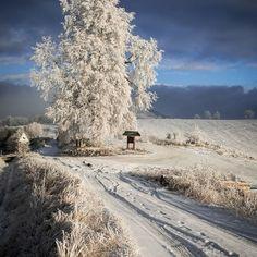 Rozprávkové prechádzky vo Folkmárskom sedle  #praveslovenske od  @marianberes Snow, Outdoor, Outdoors, Outdoor Games, The Great Outdoors, Eyes, Let It Snow