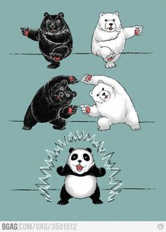 So that's how panda's are created!?