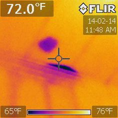 Pic #2 same foyer ceiling with water stain, viewed w/ infrared camera.