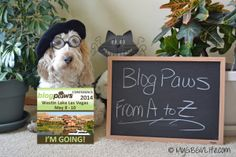 My GBGV Life going to #BlogPaws 2014? Get some facts from A to Z from Emma the GBGV