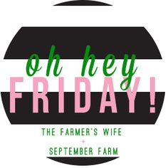 Fun Friday Link ups! ~ X-tremely V blogs, friday five