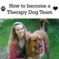 Lot of people ask me how to train and register a therapy dog. This article lists all of the steps!