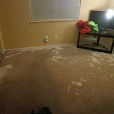The ERX Team will respond quickly to your water damage cleanup emergency and will get to work drying your home, business and/or belongings.  ERX Emergency Restoration uses the latest technology to remove water and to dry floors, walls and ceilings, saving you both time and money while also saving your valuable belongings.