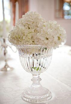 Crystal cup and hydrangeas - Copa de cristal y hortensias
