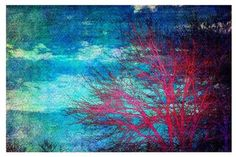 Area Rug by Sylvia Cook - Abstract Tree II contemporary-kids-rugs